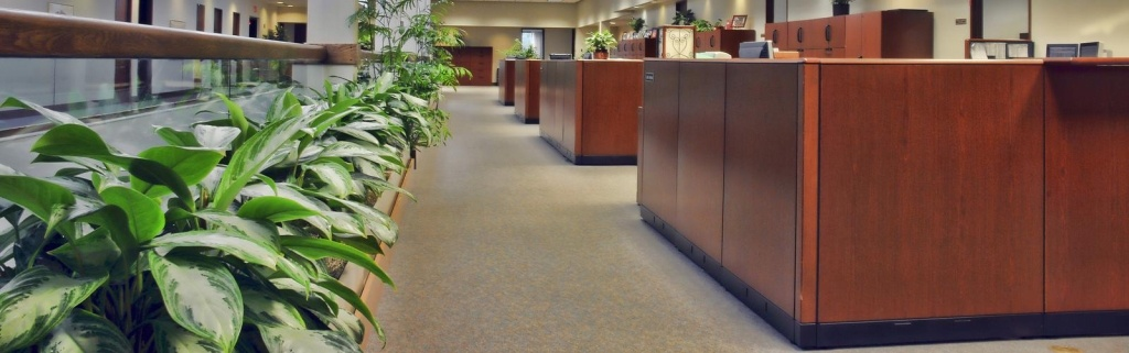 Office Cleaning and Residential Cleaning in Ashland, Oregon
